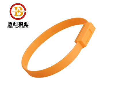 BC-P602 fixed length plastic seal ,plastic strip fixed length security seal